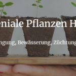 geniale & clevere Pflanzen Tipps & Hacks